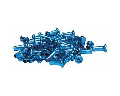 Halo Wheels 14 Gauge Nipples (Blue) (12mm) (Bag of 50)
