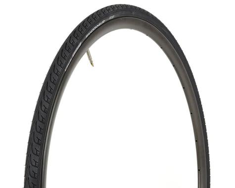 Vittoria Randonneur II Classic Tire (Black) (28mm) (700c / 622 ISO)